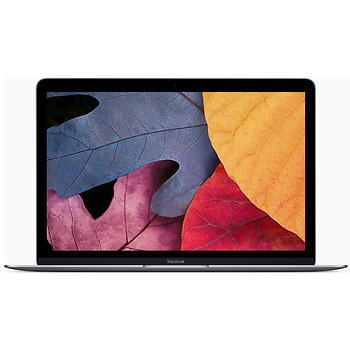 Apple MacBook 12 MF865TU/A